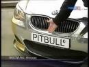 BMW M5 золотая Эрик Давидыч