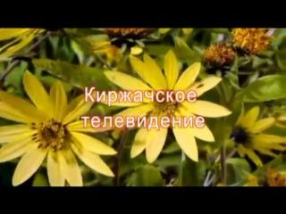 Фестиваль для любителей произведений А.С.Пушкина прошёл в ЦДЮБ