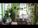 How to Green Your Home Part 1 Build an Indoor Vertical Garden