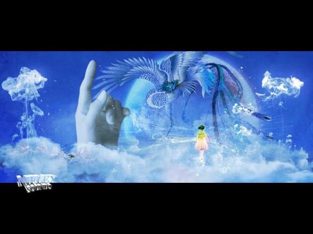 MFLEX SOUNDS - DREAMS (fabulous dreams video edit)