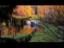 Осенний Павловский парк 2014