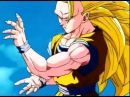 Dragon Ball Z AMV Its Not My Time