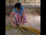 Cinnamon island Balapitiya Shri Lanka