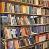 Непецинская сельская библиотека