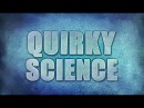 Зигзаги науки Свет 2013