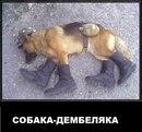 Андрей Синяев фото #39