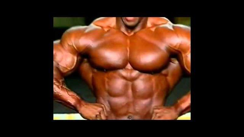 Shawn Ray Mr Olympia 1999