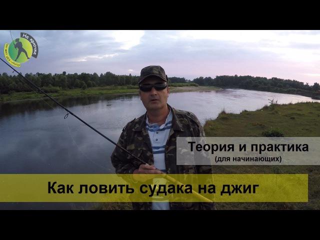 Техника ловли судака спиннингом на джиг с берега – видео разбор для начинающих