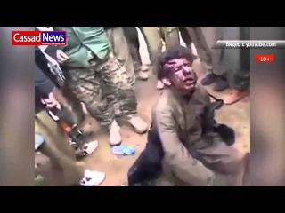 Курдские  ЮПГ  захватили  боевика ИГИЛ 18+