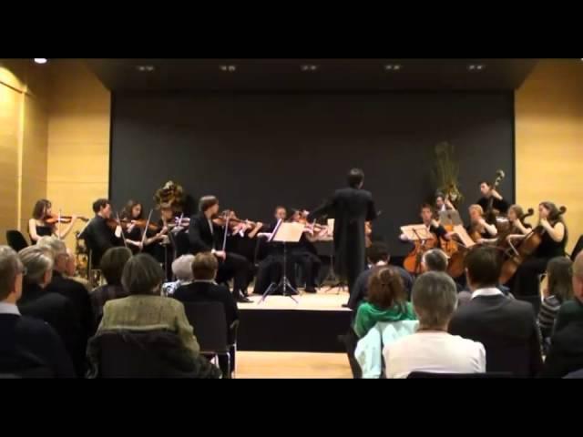 W.A. Mozart, Serenada Eine Kleine Nachtmusik Kv 525, Gnesin Student Chamber Orch, cond.M.Serenko