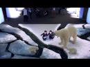 WWF - Coca-Cola Arctic Home Campaign - Augmented Reality   WWF