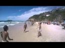 Собака играет в мяч на пляже
