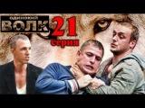 Одинокий волк. 21 серия (2013) криминал, сериал