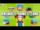 Animals Home Song Homes of Animals for children elearnin
