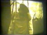 SD - Vogel. (indie-group