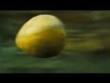 Пираты Карибского моря- Сундук мертвеца, Pirates of the Caribbean- Dead Mans Chest, 2006 - Кино - Первый канал