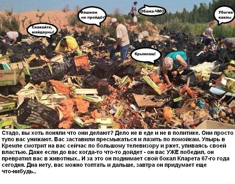 В Санкт-Петербурге, городе, пережившем блокаду, сожгли 750 килограммов продуктов - Цензор.НЕТ 577