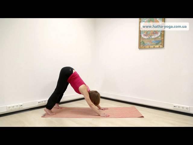 Йога упражнения от варикоза: профилактика и терапия варикозного расширения вен. Yogalife