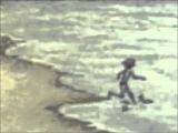 Дубовый ГаайЪ (Dolphin) - Мишины дельфины