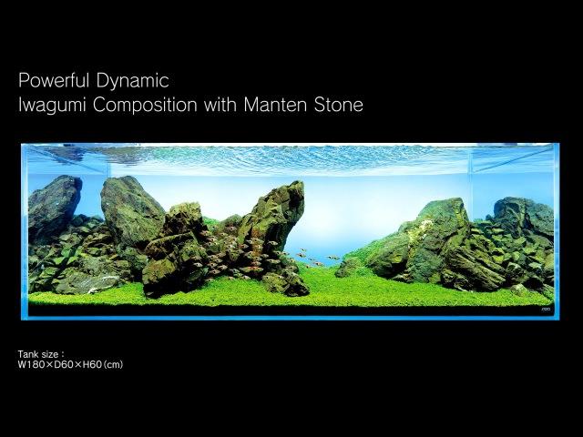 [ADAview] 180cm Aquarium Layout Iwagumi Composition with Manten Stones