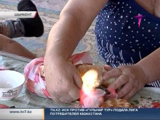 Многодетная мать-инвалид живет в бывшем свинарнике