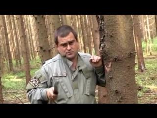 Выживание - лес - Факел в лесных условиях
