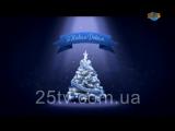 Новорічне та Різдвяне привітання Голови Зміївської районної державної адміністрації Віталія Кошеленк