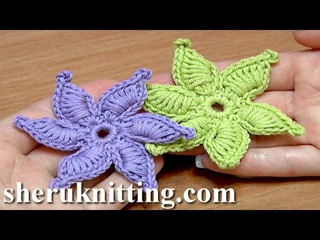 How To Crochet Flower Thick Petals With Picot Tutorial 45 Gwiazdka na szydełku