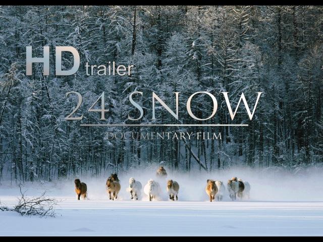 24 SNOW trailer 24 СНЕГА (Якутия)