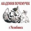 Академия Почемучек, г.Челябинск