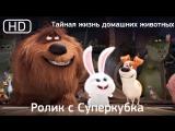 Тайная жизнь домашних животных (2016). Ролик с Суперкубка [1080p]
