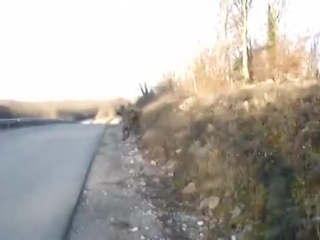 Эстонский спецназ снова жжетD
