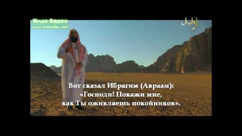 Ибрагим(а.с.)-- часть3, Исмаил(а.с.), Исхак(а.с.), Якуб(а.с.)