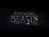 Дублированный тизер-трейлер фильма «Фантастические звери и места их обитания»