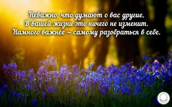 https://pp.vk.me/c629401/v629401601/3548b/QPIZ_yn9g0Q.jpg