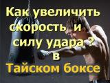 Упражнения для увеличения силы и скорости удара в тайском боксе