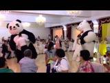 Панда Белый Мишка пневмо на свадьбе в Казахстане