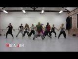 'Don't Stop The Party' Pitbull choreography by Jasmine Meakin (Mega Jam)