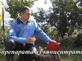 Байкал ЭМ 1