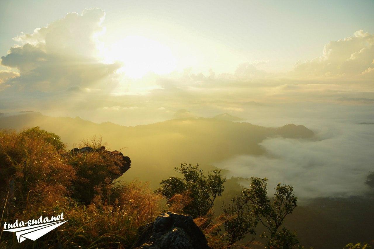 Лесной парк Пху Чи Фа