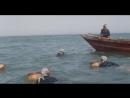 Новая Шокирующая Азия / Собачий мир 3 / Mondo cane oggi - Lorrore continua 1985