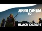 Black Desert - Как создавать торговые пути и налаживать связи между узлами