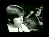 GOOD VIBRATIONS (HD) THE BEACH BOYS