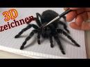 3D Zeichnung einer Vogel Spinne/ Trick Art Malerei!