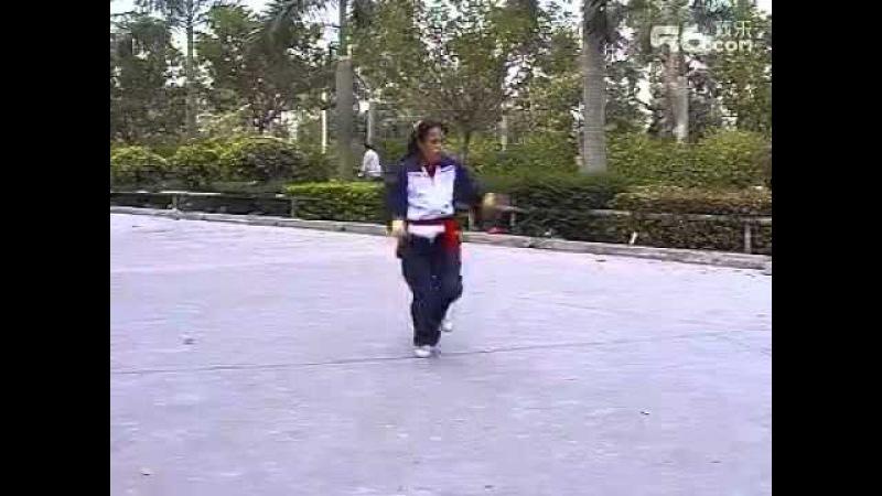 Crane form, Ha Say Fu / Ten Animal Hung Kuen