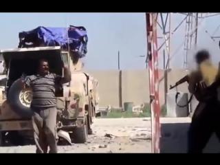 Жестокая битва, война в Сирии, Своими глазами, передачи и документальные фильмы