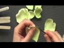 Роза Бланш обработка лепестков