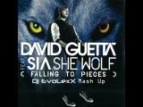 David Guetta &amp Sia feat. Dj Illona &amp Dj Diaz vs. J-Trick &amp Deorro - She Wolf (Dj EvoLexX Mash Up)