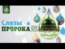 Слезы Пророка azan.kz