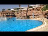 Египет. Sharm el Sheikh. Отель Sharming Inn!!! смотреть всем кто туда собрался!